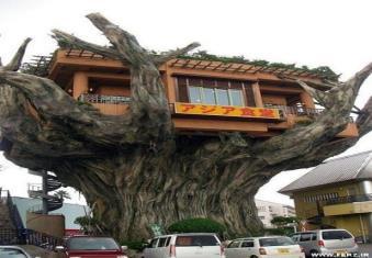رستوران درختی، کاستاریکا