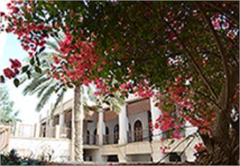 بوشهر؛ مغازلة باد و پیراهن